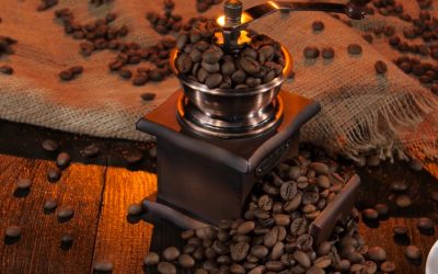 Como cultivar meu próprio café