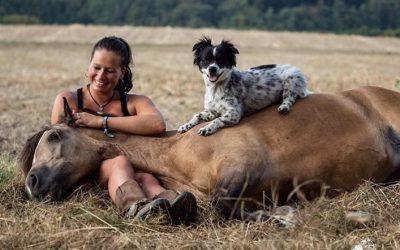 Como cuidar de cachorros no sítio